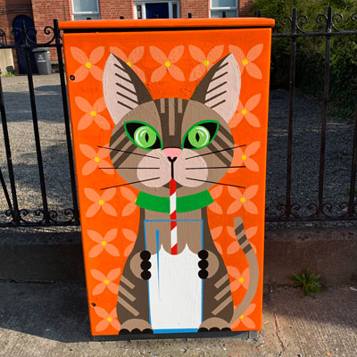 Dublin Canvas Project 2021: Cool for Cats